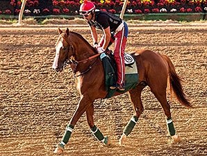 California Chrome Gets First Tour of Pimlico