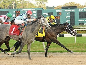 Vinceremos holds off Harpoon to win the Sam F. Davis Stakes.