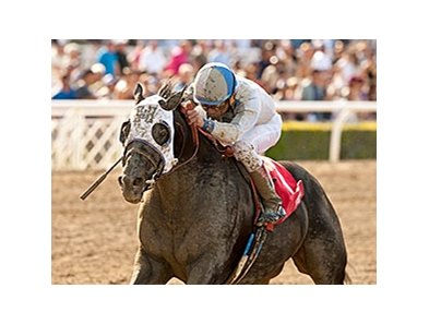 Sahara Sky won the San Carlos Stakes on March 8.