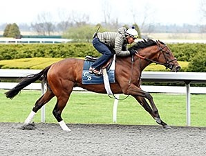 Bobby's Kitten worked 5 furlongs at Keeneland on April 5.