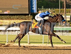 Points Offthebench in the Santa Anita Sprint Championship.