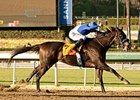 Points Offthebench Takes Top Cal-Bred Honors