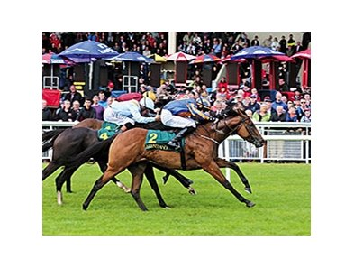 "Dick Whittington comes on late to win the Keeneland Phoenix Stakes.<br><a target=""blank"" href=""http://photos.bloodhorse.com/AtTheRaces-1/At-the-Races-2014/i-rLdncVg"">Order This Photo</a>"