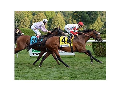 "Big Blue Kitten comes on late to win the Lure Stakes.<br><a target=""blank"" href=""http://photos.bloodhorse.com/AtTheRaces-1/At-the-Races-2014/i-xvvBNKn"">Order This Photo</a>"