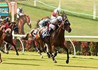 Del Mar Shifting Turf Races After Breakdowns