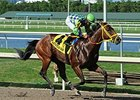"Wildcat Red takes on 13 in the Oklahoma Derby.<br><a target=""blank"" href=""http://photos.bloodhorse.com/AtTheRaces-1/At-the-Races-2014/i-zt2MSMm"">Order This Photo</a>"
