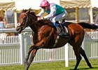 "Kingman tries for a fourth consecutive top-level win in the Prix du Haras de Fresnay-Le-Buffard Jacques Le Marois.<br><a target=""blank"" href=""http://photos.bloodhorse.com/AtTheRaces-1/At-the-Races-2014/i-VMCTK6V"">Order This Photo</a>"
