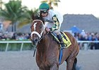 "Mucho Macho Man <br><a target=""blank"" href=""http://photos.bloodhorse.com/AtTheRaces-1/At-the-Races-2014/35724761_2vdnSX#!i=3029254625&k=VzsHSJ2"">Order This Photo</a>"