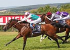 "Kingman wins the 2014 QIPCO Sussex Stakes. <br><a target=""blank"" href=""http://photos.bloodhorse.com/AtTheRaces-1/At-the-Races-2014/i-gTW8HKR"">Order This Photo</a>"