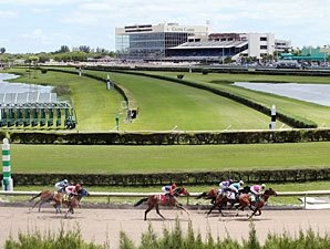 Renovations Noted At Gulfstream Park West Bloodhorse