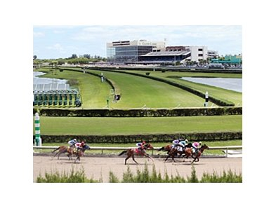 Calder Racecourse also known as Gulfstream Park West.