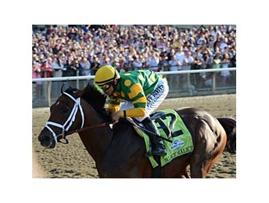 "Palace Malice<br><a target=""blank"" href=""http://photos.bloodhorse.com/TripleCrown/2013-Triple-Crown/Belmont-Stakes-145/29744699_jpqpwR#!i=2563007502&k=SzzhQgN"">Order This Photo</a>"