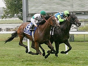 Margano fights off Holiday Star to win the PTHA President's Cup Stakes.