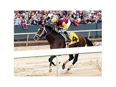 Golden Lad comes home strong to win the Razorback Handicap at Oaklawn.