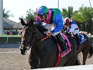 Plesa Hoping to Get Lucky in Woodward