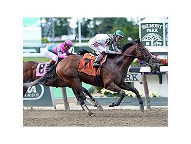 "Palace won the 2014 True North Stakes.<br><a target=""blank"" href=""http://photos.bloodhorse.com/AtTheRaces-1/At-the-Races-2014/i-LxhP94z"">Order This Photo</a>"