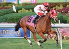 "Major Marvel <br><a target=""blank"" href=""http://photos.bloodhorse.com/AtTheRaces-1/at-the-races-2013/27257665_QgCqdh#!i=2954498013&k=sh6CKPM"">Order This Photo</a>"