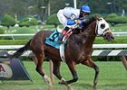 Strong Mandate