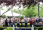 Fasig-Tipton Kentucky July 2014 Sale Wrap