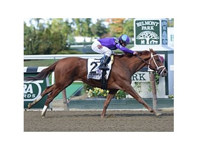 Princess Of Sylmar