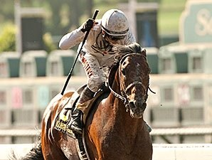 Majestic Harbor Shocks Gold Cup