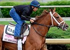 Kentucky Oaks Graduates Seek Acorn Redemption