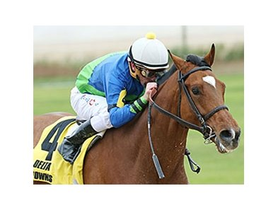 Grand Contender will carry high weight of 121 pounds in the Lone Star Park Handicap.
