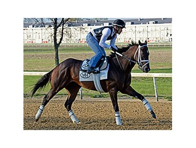 "Vicar's in Trouble worked five furlongs in 1:00 2/5 at the Churchill Downs training center April 19.<br><a target=""blank"" href=""http://photos.bloodhorse.com/AtTheRaces-1/At-the-Races-2014/35724761_2vdnSX#!i=3189342732&k=cLNSbRF"">Order This Photo</a>"