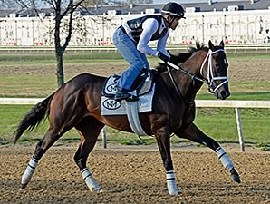 Vicar's in Trouble worked five furlongs in 1:00 2/5 at the Churchill Downs training center April 19.