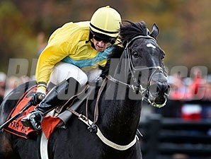 Demonstrative and Robert Walsh take the Grand National at Far Hills.