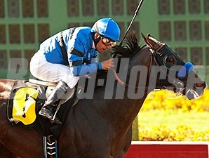 Sky Kingdom won the 1 1/16-mile American Flag Stakes at Los Alamitos on July 4.