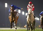 Certify (left) defeated L'Amour de Ma Vie in the Cape Verdi.
