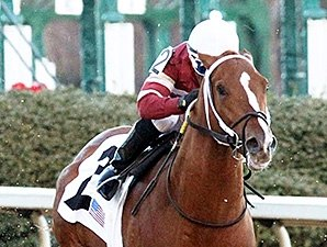 Tapiture Breezes for Rebel Stakes
