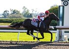 "Sum of the Parts is the 3-1 favorite in the Twin Spires Turf Sprint Stakes.<br><a target=""blank"" href=""http://photos.bloodhorse.com/AtTheRaces-1/at-the-races-2013/27257665_QgCqdh#!i=2810624366&k=nTmj3Cb"">Order This Photo</a>"