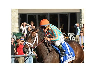 "My Conquestadory <br><a target=""blank"" href=""http://photos.bloodhorse.com/AtTheRaces-1/at-the-races-2013/27257665_QgCqdh#!i=2814748240&k=nS6C2Vq"">Order This Photo</a>"