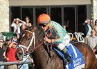My Conquestadory