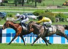 Karakontie Wins French Two Thousand Guineas