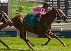 Kaigun Makes Amends in Play the King Stakes