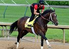 Commanding Curve Breezes at Churchill Downs