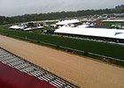 Heavy Rain, Wind Greet Pimlico Friday