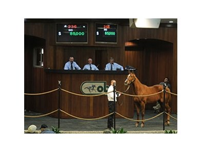 Back to Class sold for $85,000 to top the consignor preferred session of Ocala Breeders' Sales Co.'s winter mixed sale Jan. 22.