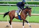 Candy Boy
