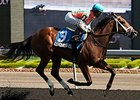 Conquest Tsunami won the 2014 Victoria Stakes.