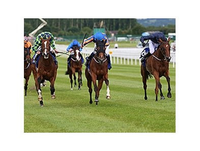 "Bracelet (center) pulls away from the pack to win the Darley Irish.<br><a target=""blank"" href=""http://photos.bloodhorse.com/AtTheRaces-1/At-the-Races-2014/i-nJrCvbh"">Order This Photo</a>"