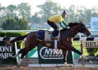 Tonalist jogs at Belmont Park May 25.