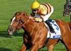 "Wise Dan rolls to victory in the Shadwell Turf Mile Stakes. <br><a target=""blank"" href=""http://photos.bloodhorse.com/AtTheRaces-1/at-the-races-2012/22274956_jFd5jM#!i=2132599806&k=MrpDq2h"">Order This Photo</a>."