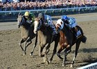 Will Take Charge winning the 2013 Travers Stakes.