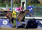 "New Year's Day<br><a target=""blank"" href=""http://photos.bloodhorse.com/BreedersCup/2013-Breeders-Cup/Juvenile/33149927_s6DS8h#!i=2888277853&k=46PNPMC"">Order This Photo</a>"