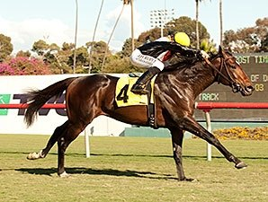 Global View Tops Penn Mile Nominations