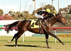 Global View Clear Winner of Generous Stakes